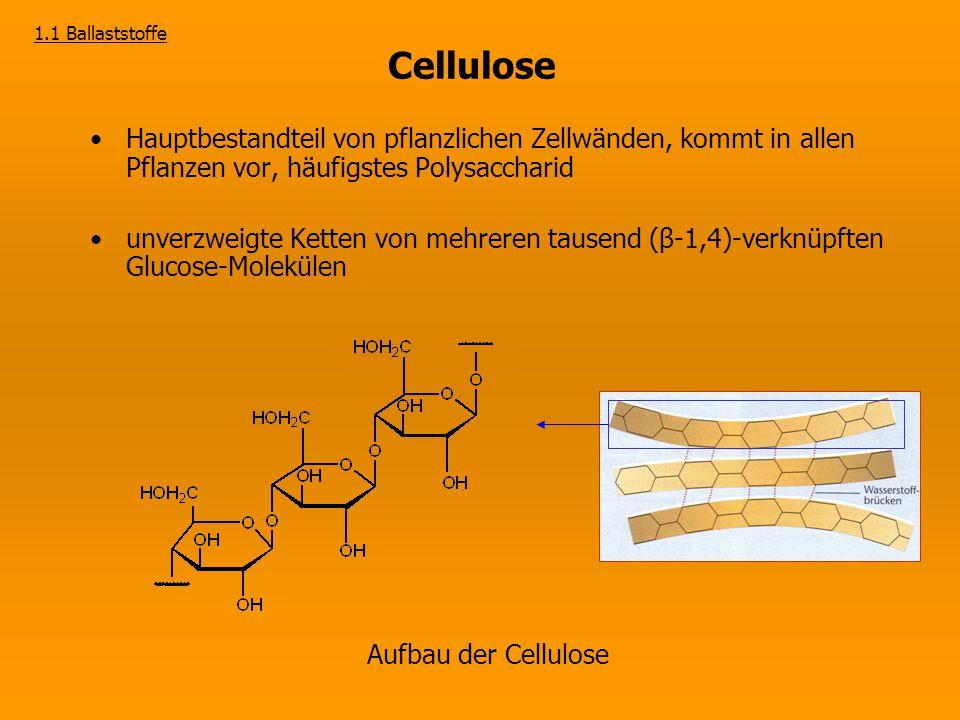 1.1 Ballaststoffe Cellulose. Hauptbestandteil von pflanzlichen Zellwänden, kommt in allen Pflanzen vor, häufigstes Polysaccharid.
