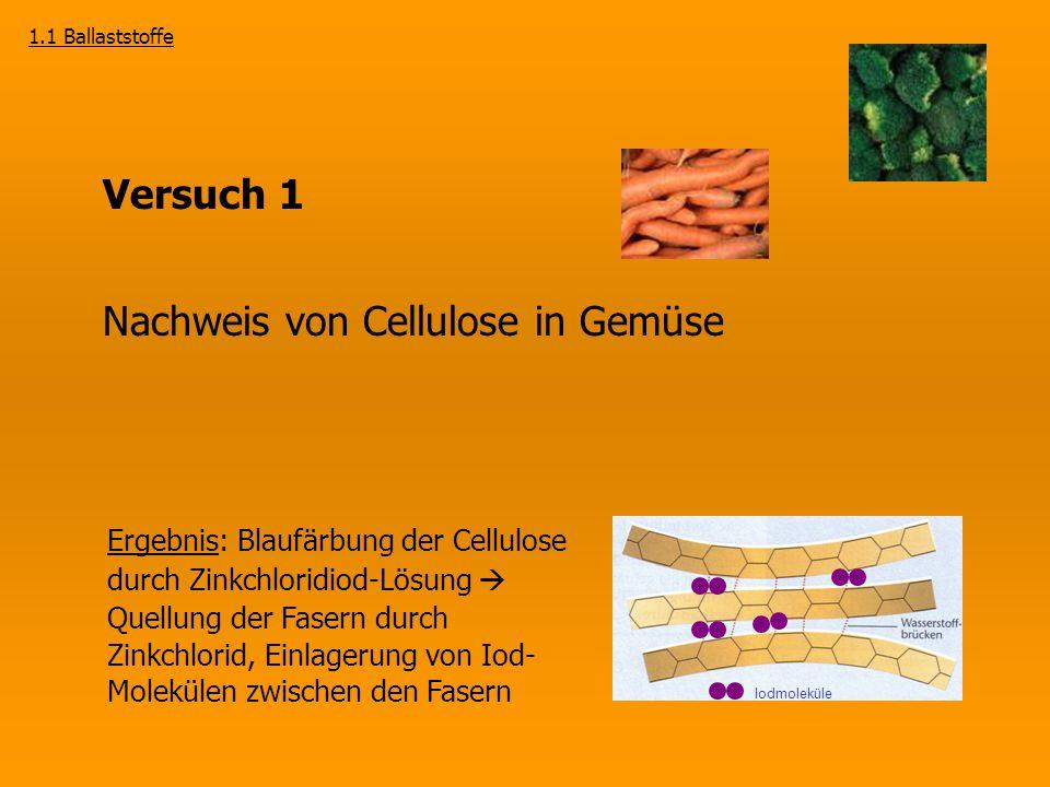 Nachweis von Cellulose in Gemüse