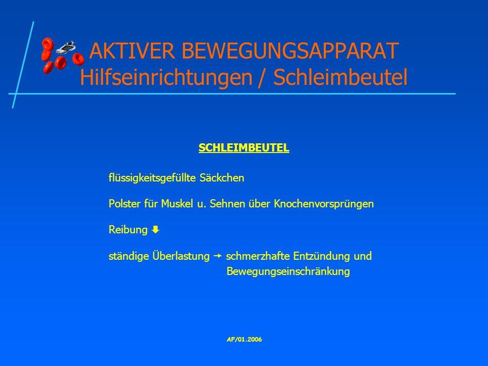 AKTIVER BEWEGUNGSAPPARAT Hilfseinrichtungen / Schleimbeutel