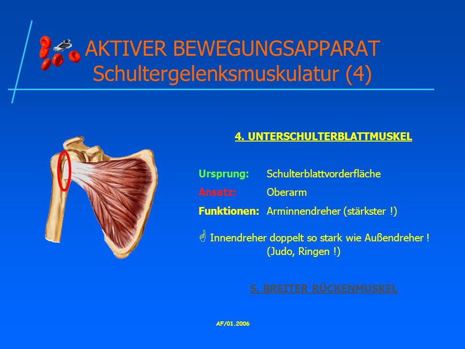 AKTIVER BEWEGUNGSAPPARAT Schultergelenksmuskulatur (4)