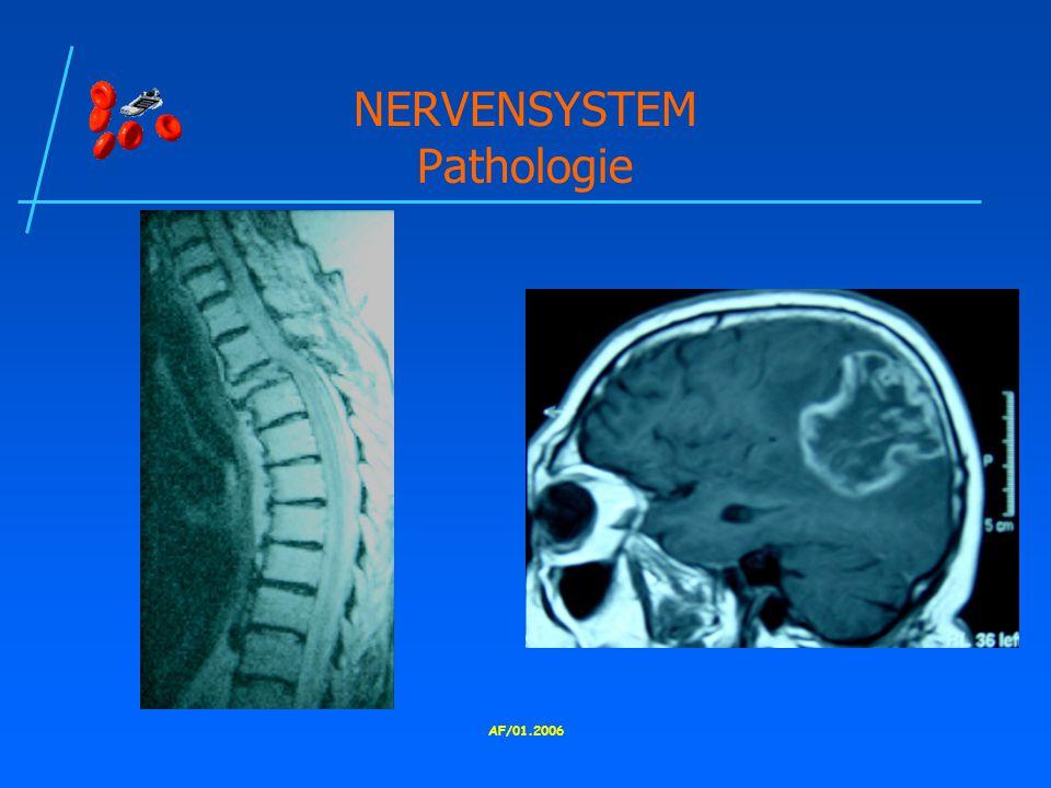 NERVENSYSTEM Pathologie