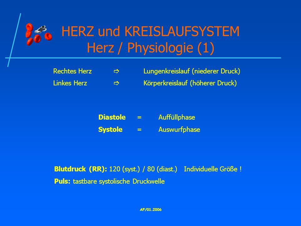 HERZ und KREISLAUFSYSTEM Herz / Physiologie (1)