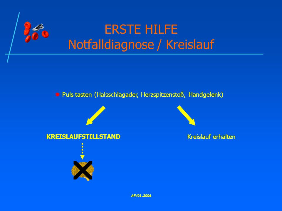 ERSTE HILFE Notfalldiagnose / Kreislauf