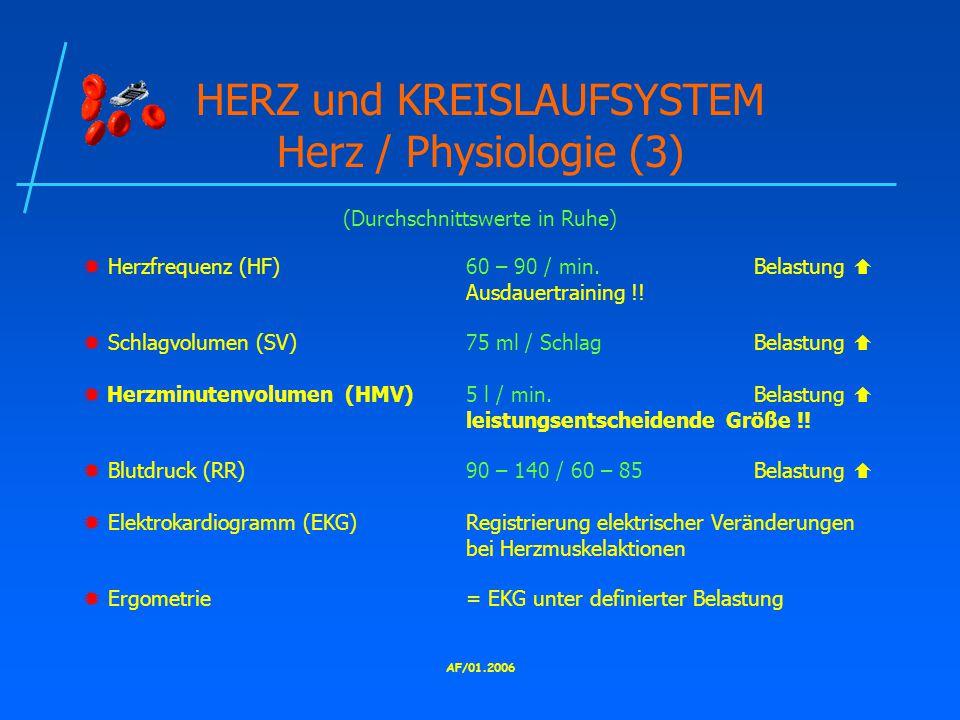 HERZ und KREISLAUFSYSTEM Herz / Physiologie (3)