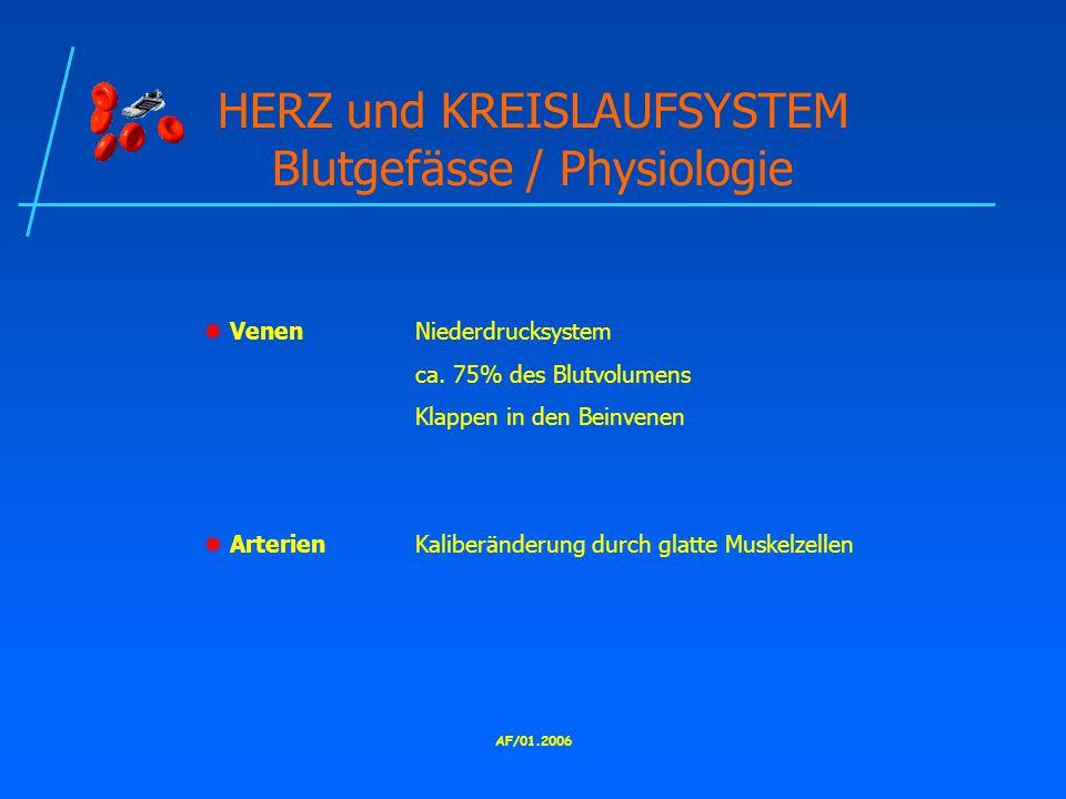HERZ und KREISLAUFSYSTEM Blutgefässe / Physiologie