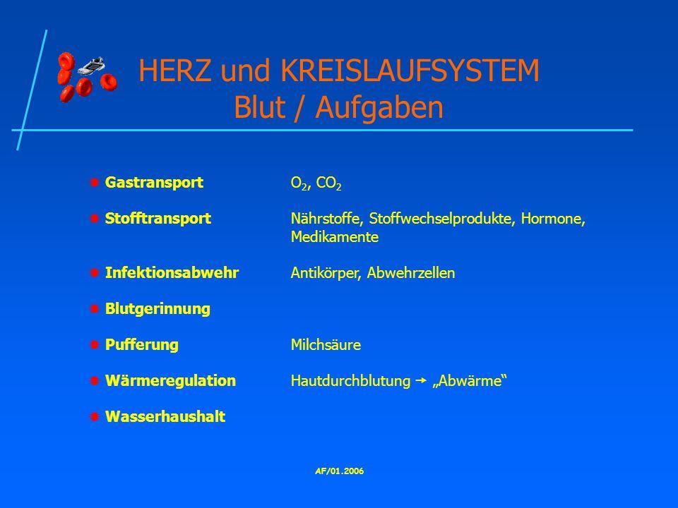 HERZ und KREISLAUFSYSTEM Blut / Aufgaben
