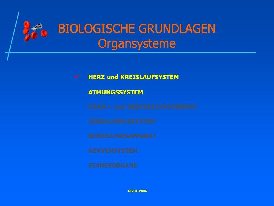 BIOLOGISCHE GRUNDLAGEN Organsysteme