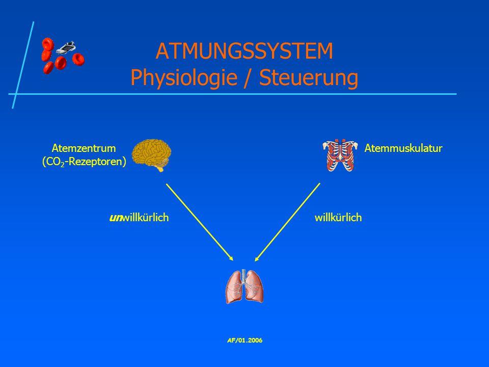 ATMUNGSSYSTEM Physiologie / Steuerung