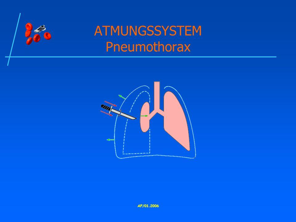 ATMUNGSSYSTEM Pneumothorax