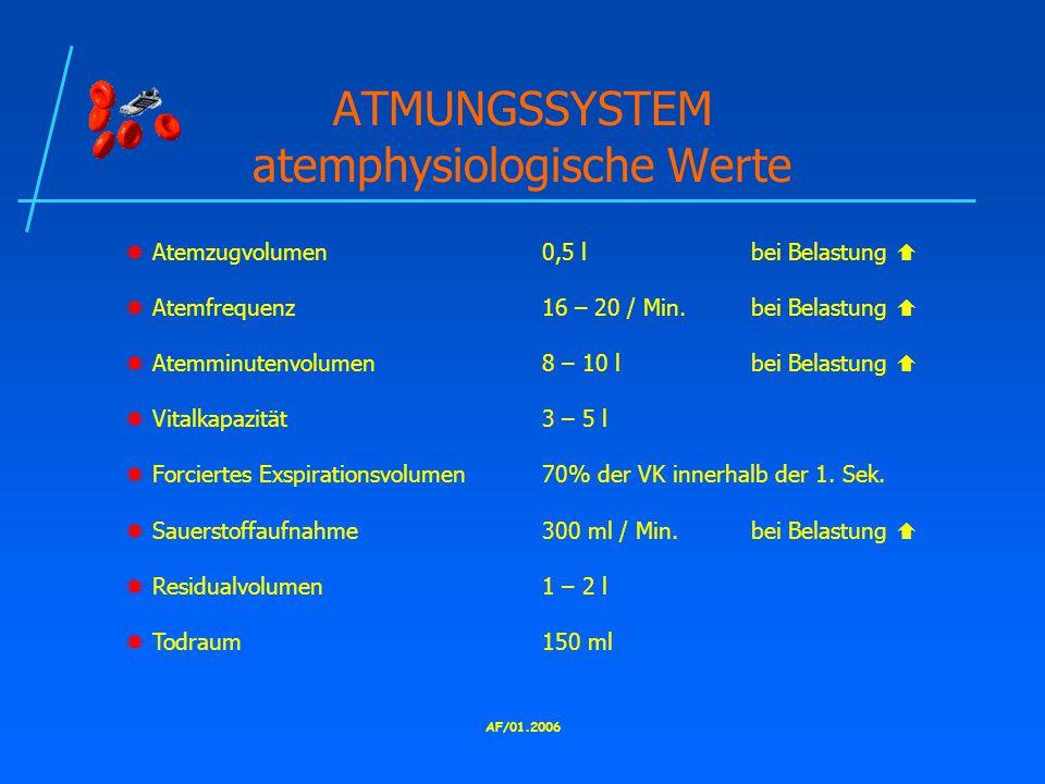 ATMUNGSSYSTEM atemphysiologische Werte
