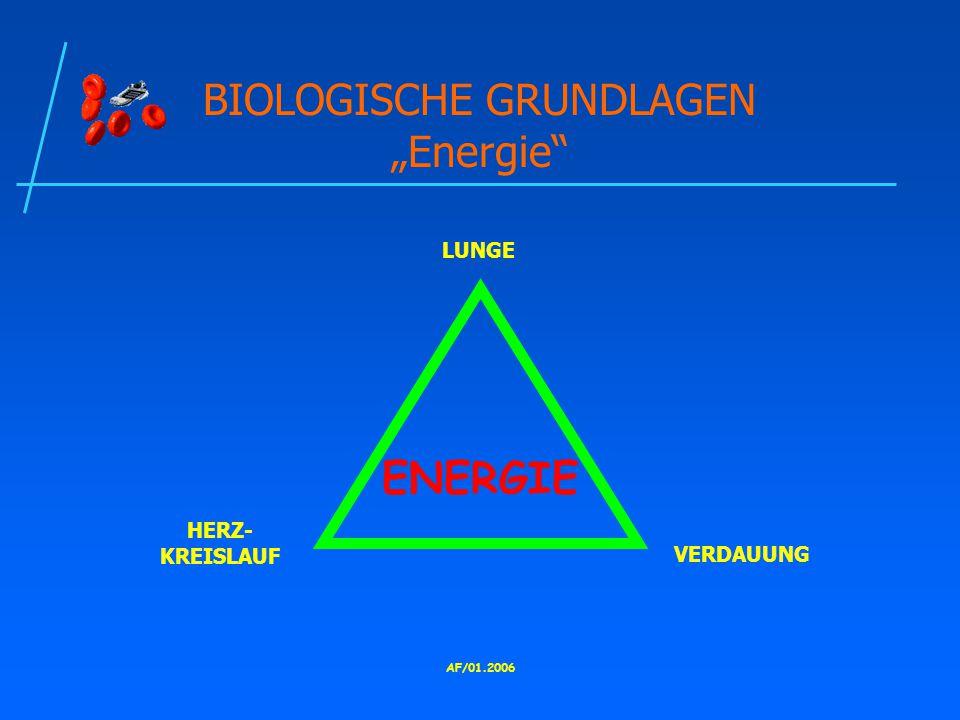 """BIOLOGISCHE GRUNDLAGEN """"Energie"""