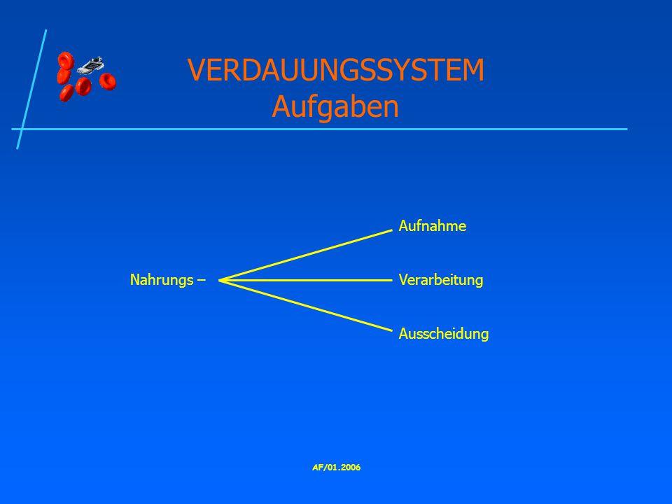 VERDAUUNGSSYSTEM Aufgaben