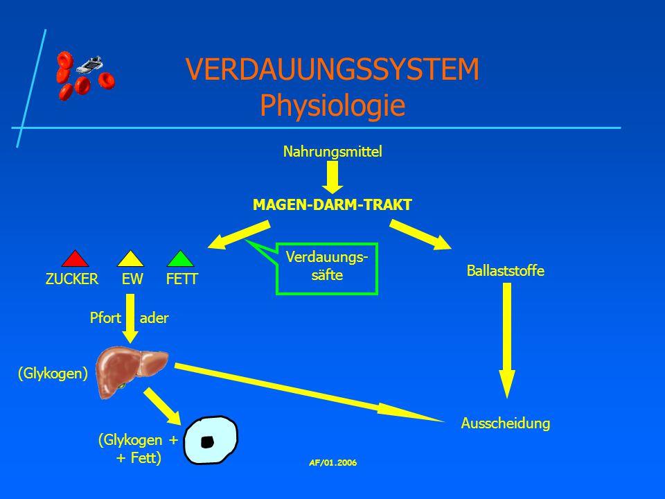 VERDAUUNGSSYSTEM Physiologie