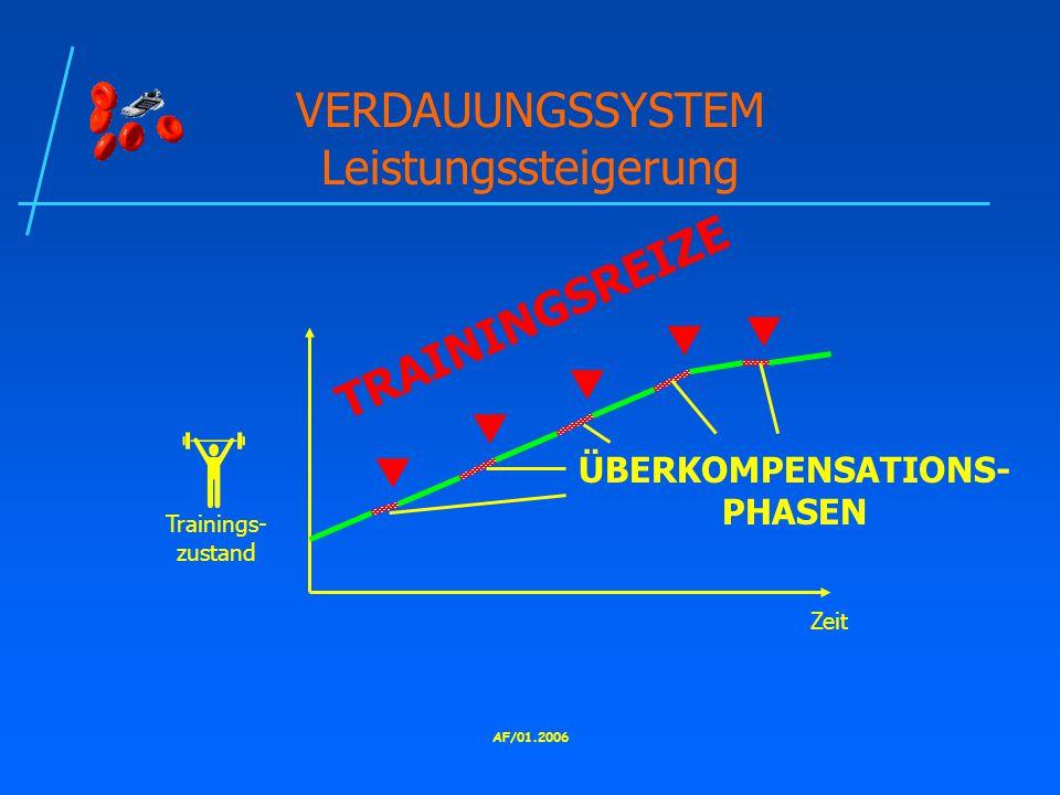 VERDAUUNGSSYSTEM Leistungssteigerung
