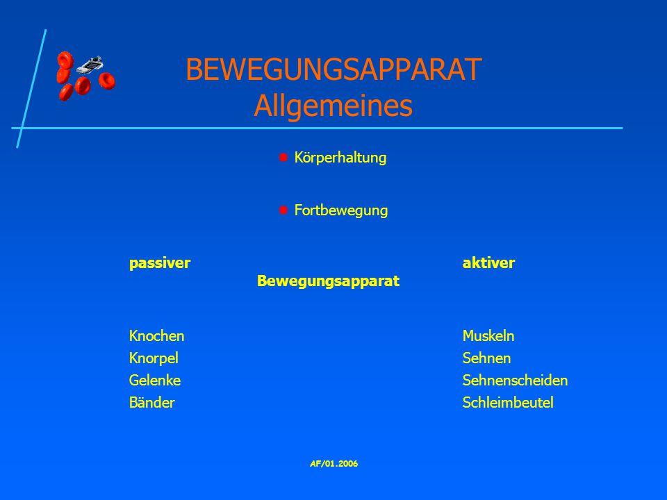 BEWEGUNGSAPPARAT Allgemeines
