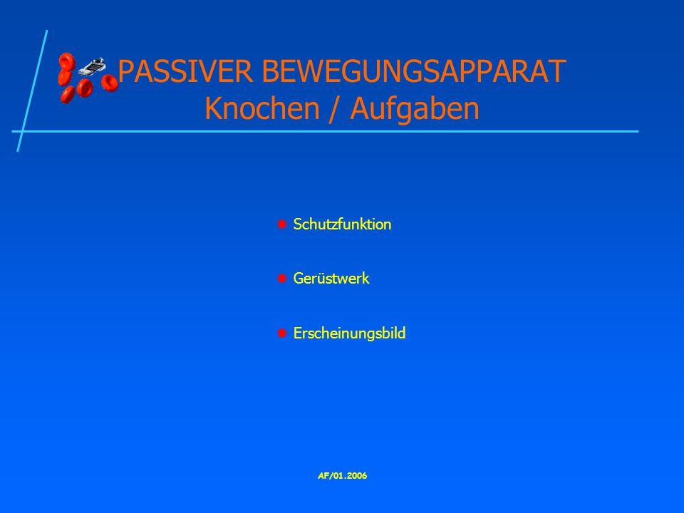 PASSIVER BEWEGUNGSAPPARAT Knochen / Aufgaben