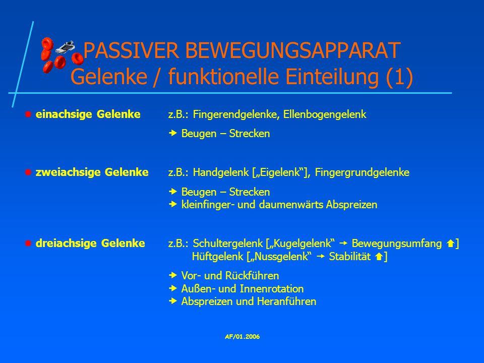 PASSIVER BEWEGUNGSAPPARAT Gelenke / funktionelle Einteilung (1)
