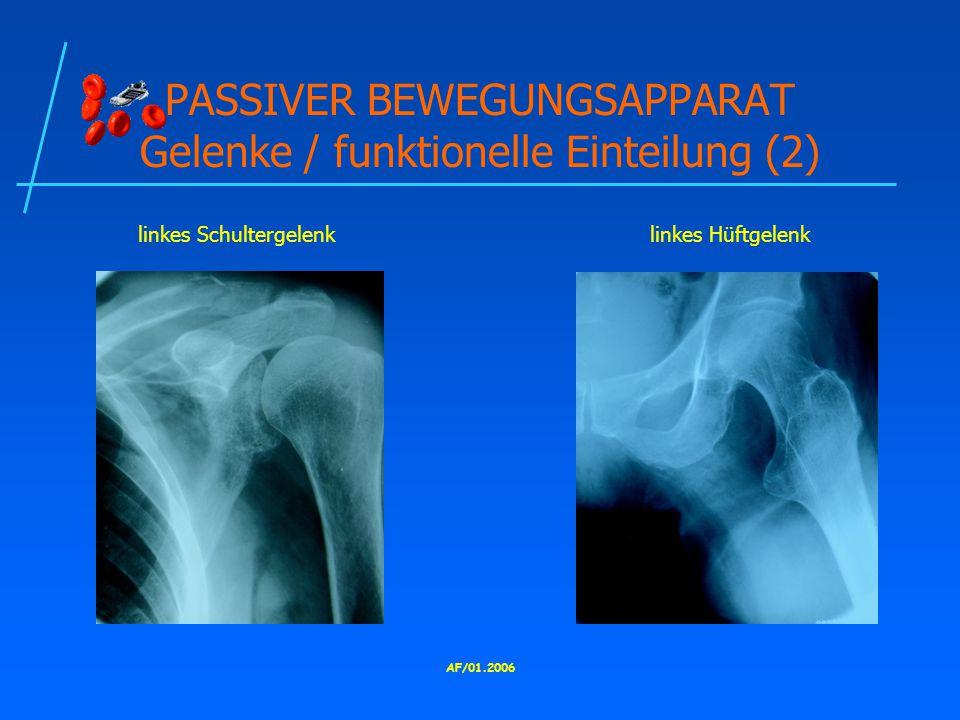 PASSIVER BEWEGUNGSAPPARAT Gelenke / funktionelle Einteilung (2)