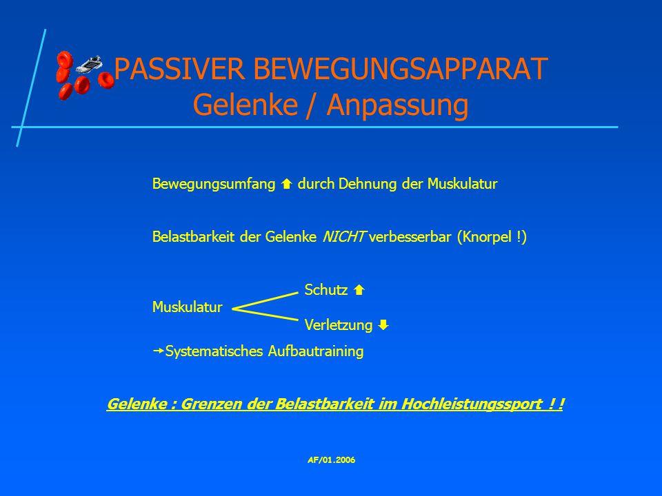 PASSIVER BEWEGUNGSAPPARAT Gelenke / Anpassung