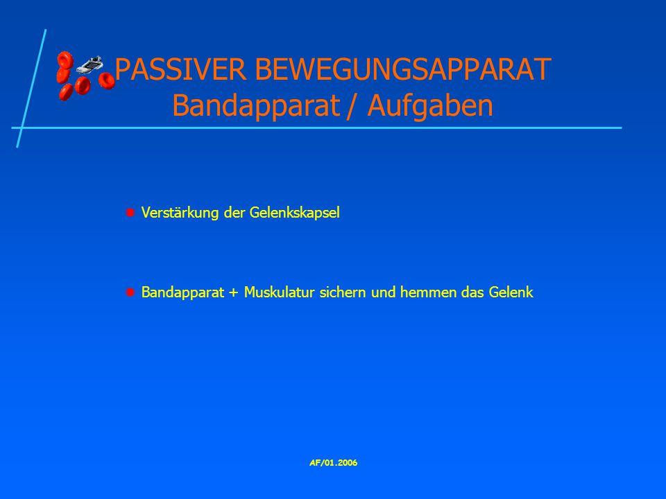 PASSIVER BEWEGUNGSAPPARAT Bandapparat / Aufgaben