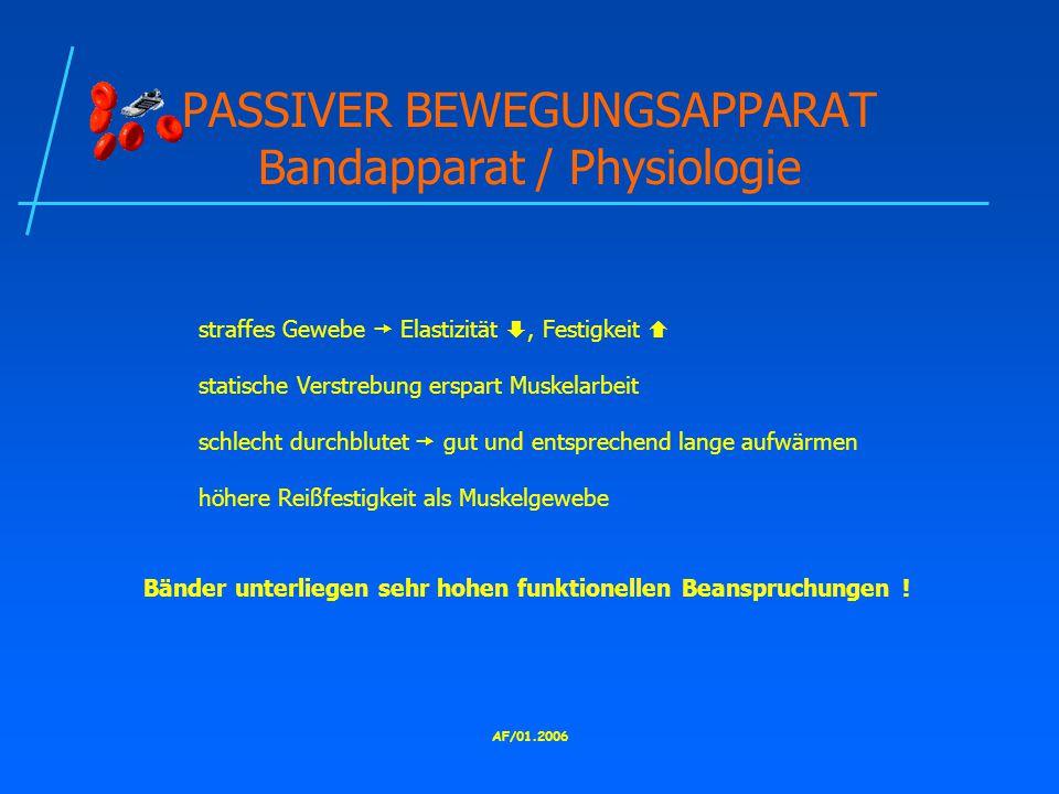 PASSIVER BEWEGUNGSAPPARAT Bandapparat / Physiologie