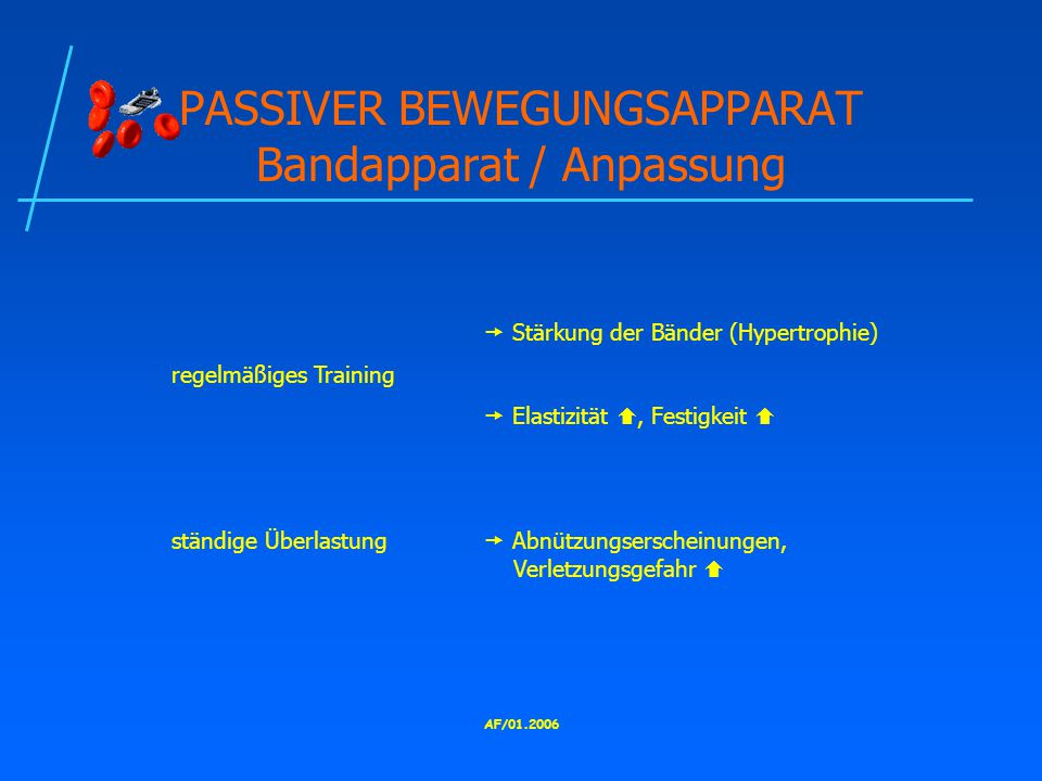 PASSIVER BEWEGUNGSAPPARAT Bandapparat / Anpassung