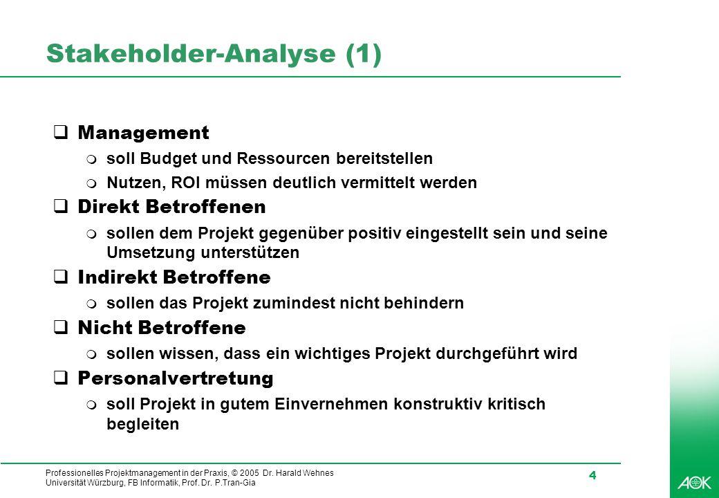 Stakeholder-Analyse (1)