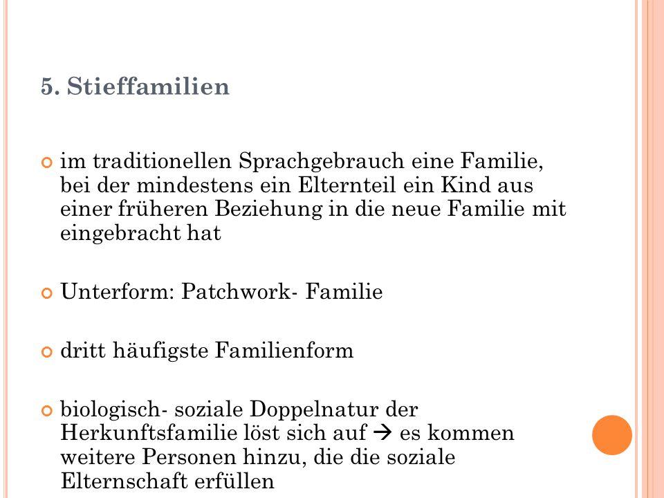5. Stieffamilien