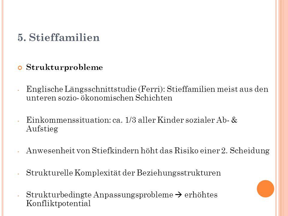 5. Stieffamilien Strukturprobleme