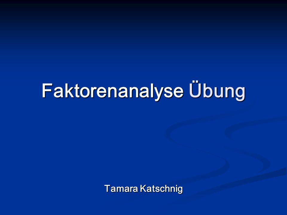 Faktorenanalyse Übung