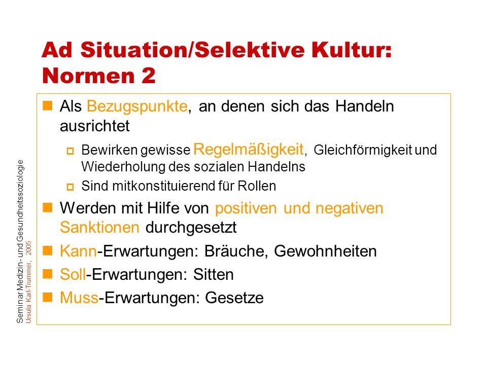 Ad Situation/Selektive Kultur: Normen 2