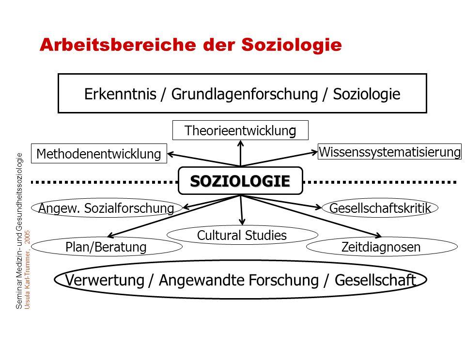 Arbeitsbereiche der Soziologie