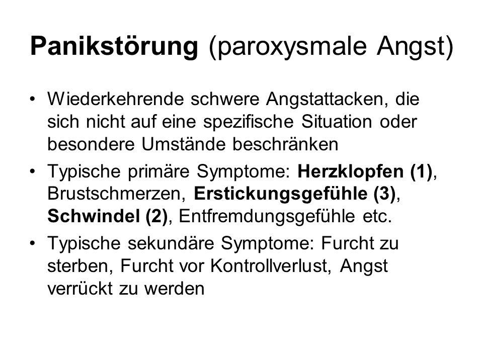 Panikstörung (paroxysmale Angst)