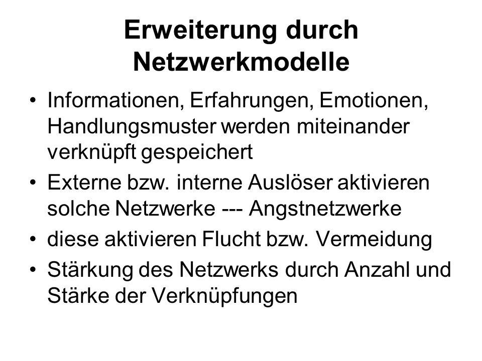 Erweiterung durch Netzwerkmodelle