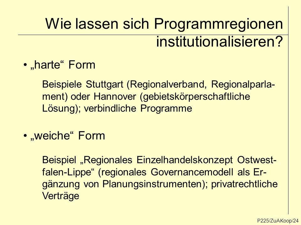 Wie lassen sich Programmregionen institutionalisieren