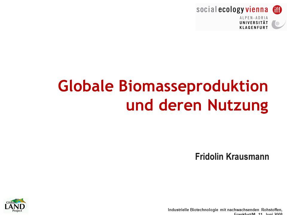 Globale Biomasseproduktion und deren Nutzung