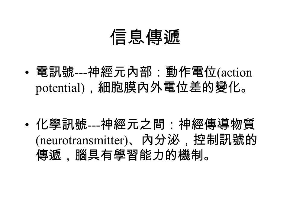 信息傳遞 電訊號---神經元內部:動作電位(action potential),細胞膜內外電位差的變化。