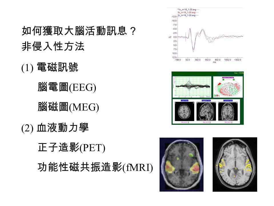 如何獲取大腦活動訊息? 非侵入性方法 (1) 電磁訊號 腦電圖(EEG) 腦磁圖(MEG) (2) 血液動力學 正子造影(PET) 功能性磁共振造影(fMRI)