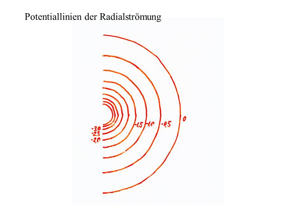 Potentiallinien der Radialströmung