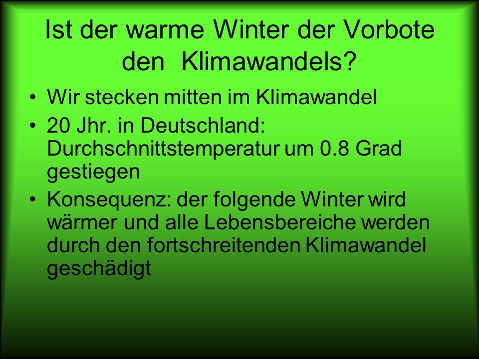 Ist der warme Winter der Vorbote den Klimawandels
