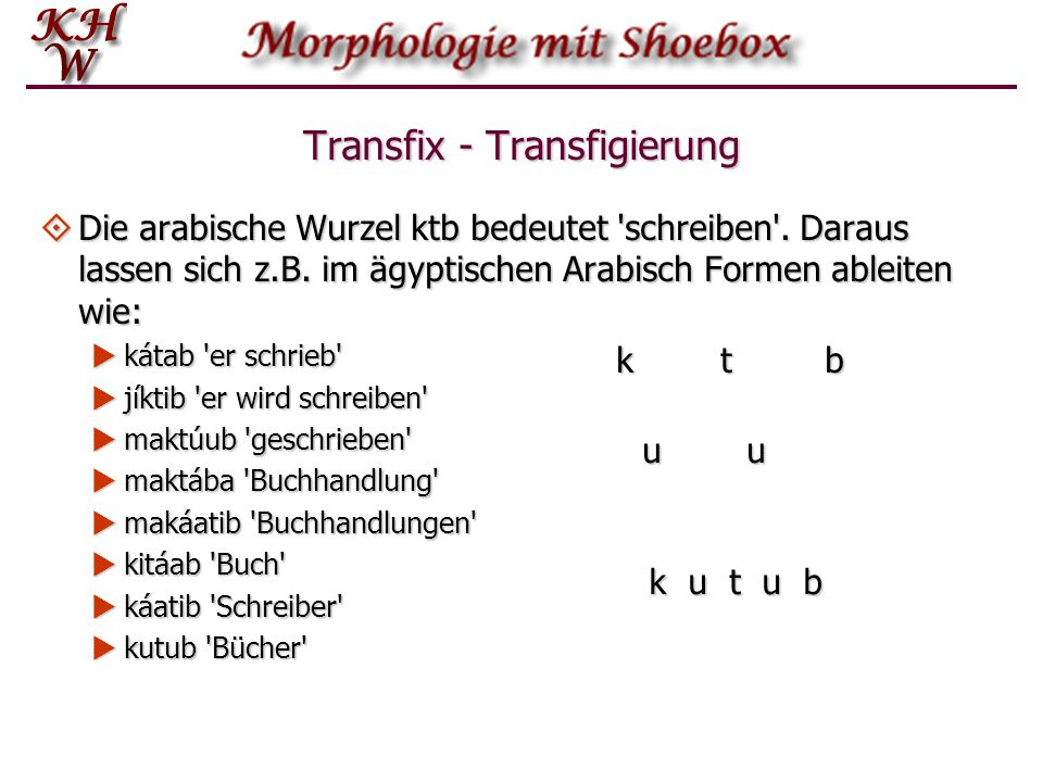 Transfix - Transfigierung