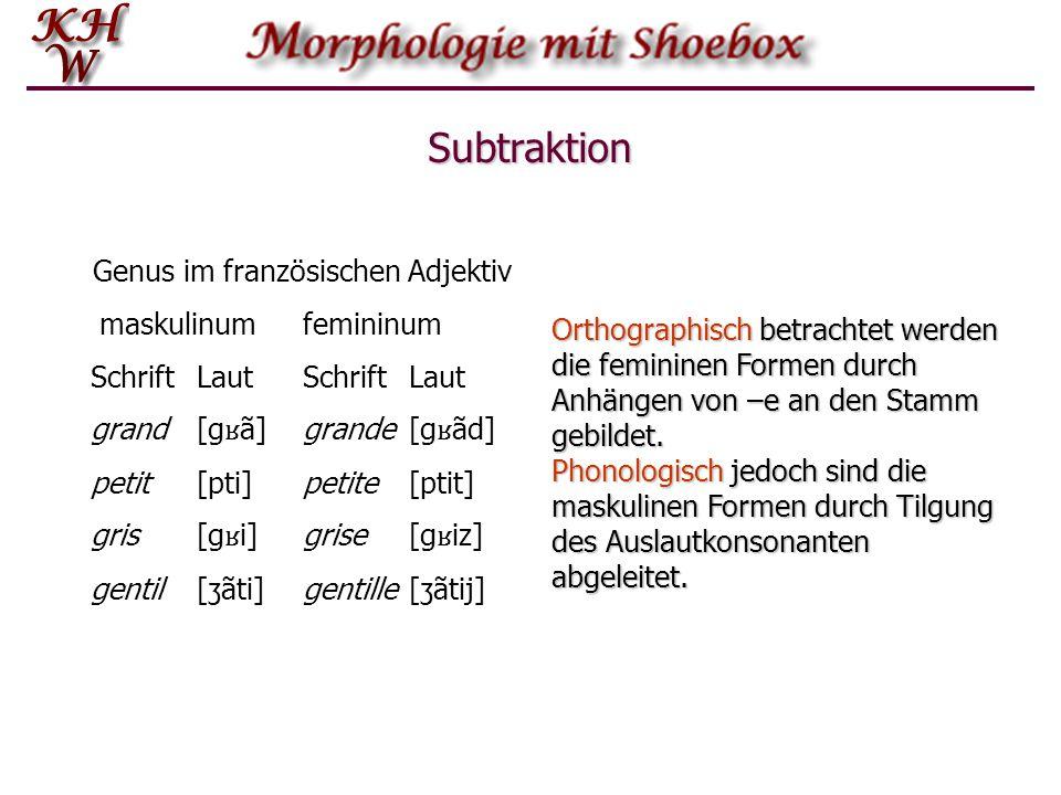 Subtraktion Genus im französischen Adjektiv maskulinum femininum