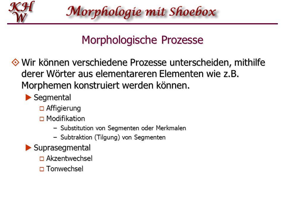 Morphologische Prozesse