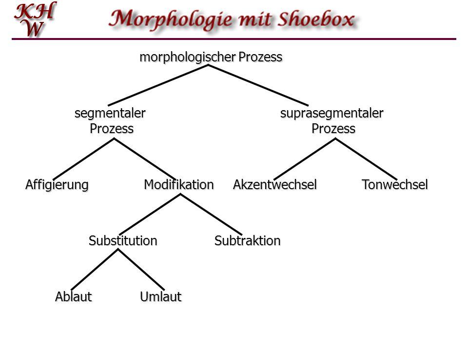 morphologischer Prozess