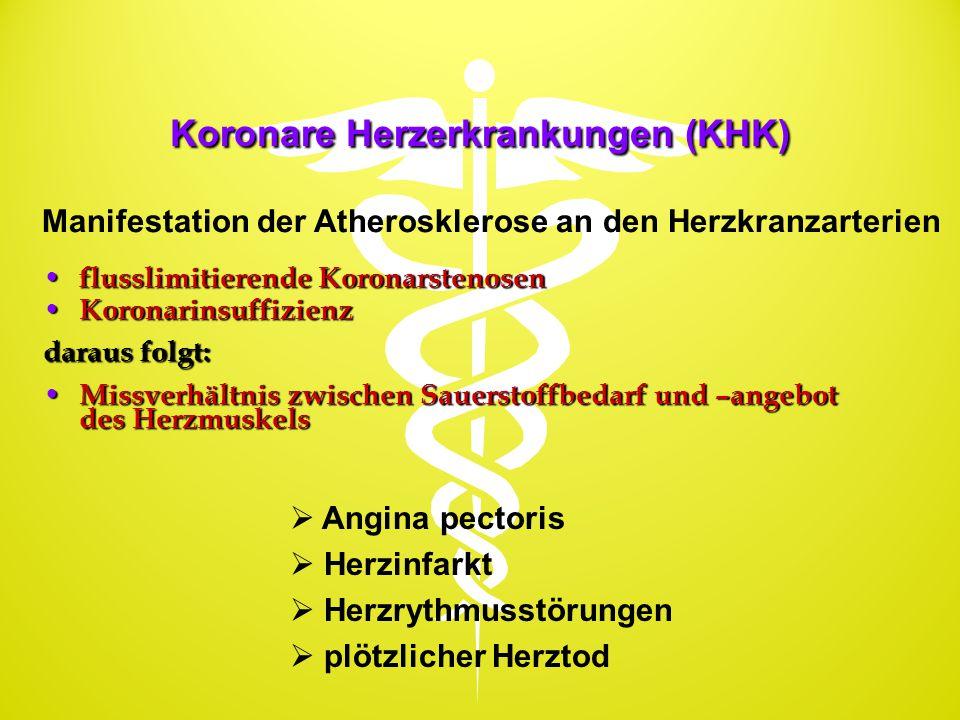 Koronare Herzerkrankungen (KHK)