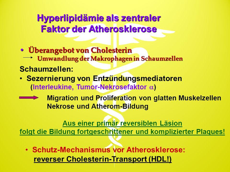 Hyperlipidämie als zentraler Faktor der Atherosklerose