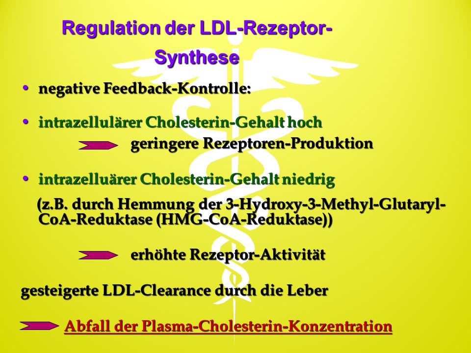 Regulation der LDL-Rezeptor-Synthese