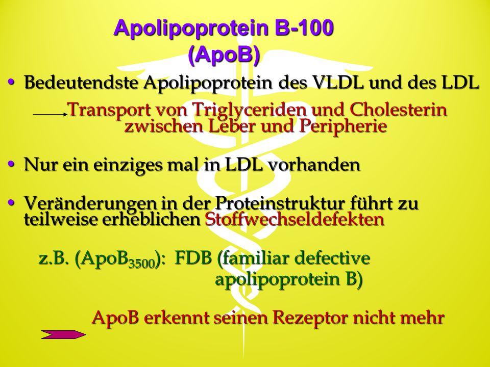 Apolipoprotein B-100 (ApoB)