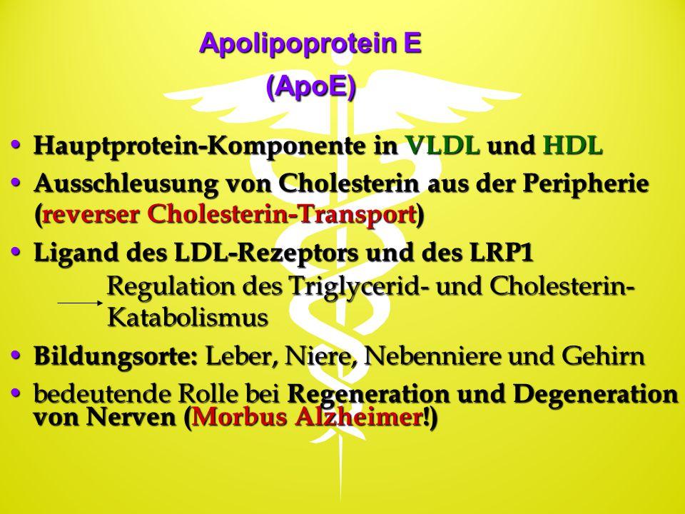 Apolipoprotein E (ApoE)