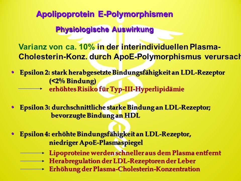 Apolipoprotein E-Polymorphismen Physiologische Auswirkung
